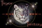 Tiger Territory -- the most comprehensive tiger site available today.